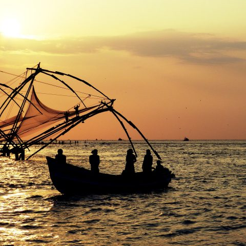 Things to Do & See in Kochi